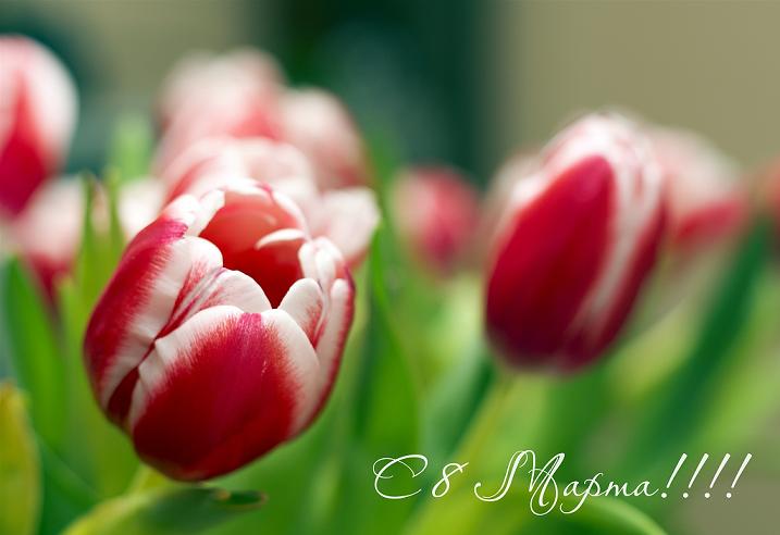 Позравляем всех с праздником Восьмого марта!