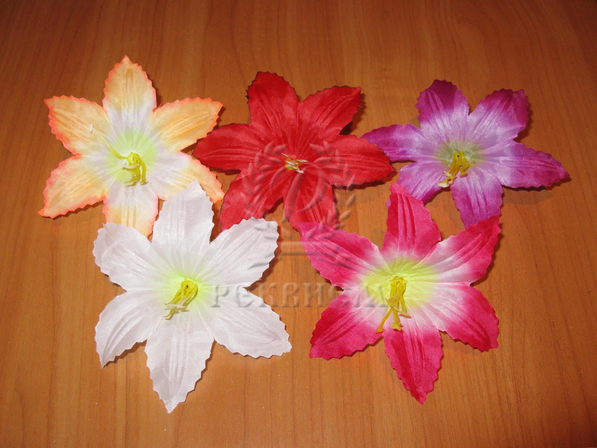 Oрхидея декоративная средняя C