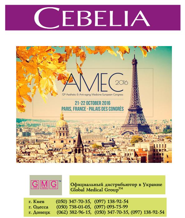 Приглашение на АМЕС-2016г. Париж 21-22 октября 2016г.
