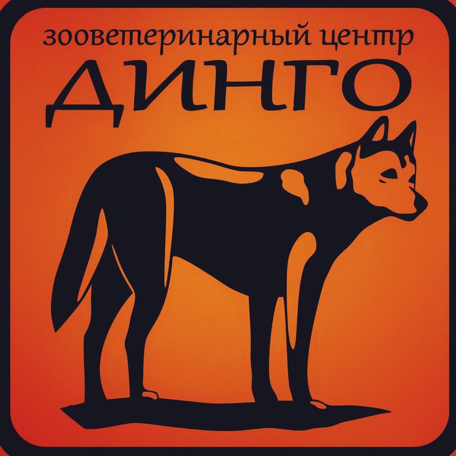 Динго))
