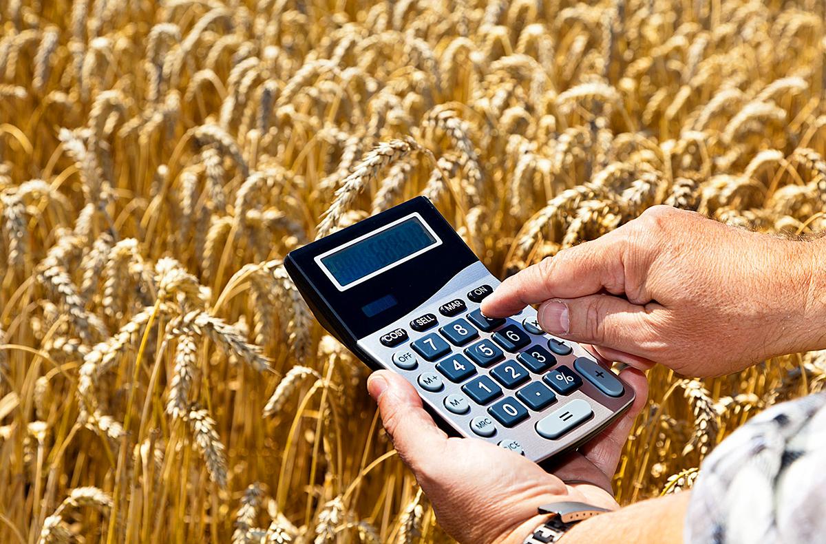 Депутаты НС разрешили сельхозпроизводителям напрямую закупать сырье из Госрезерва