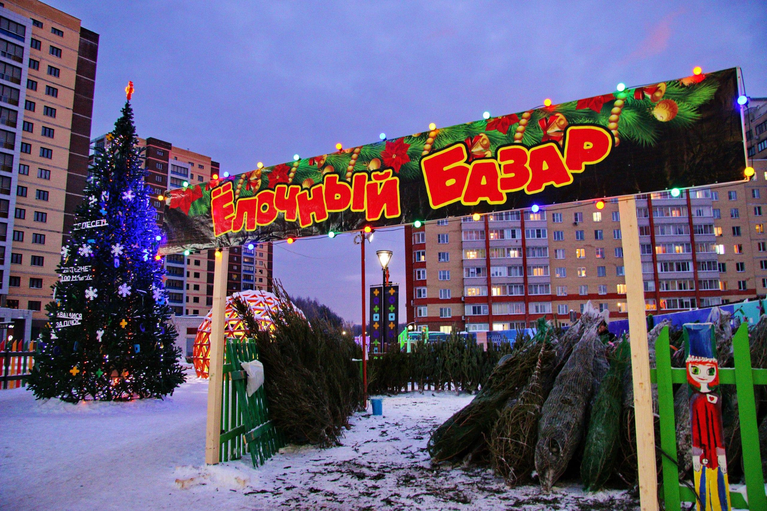 Адреса елочных базаров в Донецке