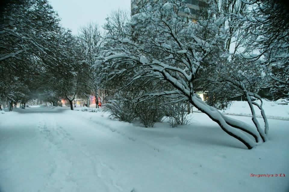 Донецк накануне Рождества завалило снегом, горожане делятся снимками чудесного белого города