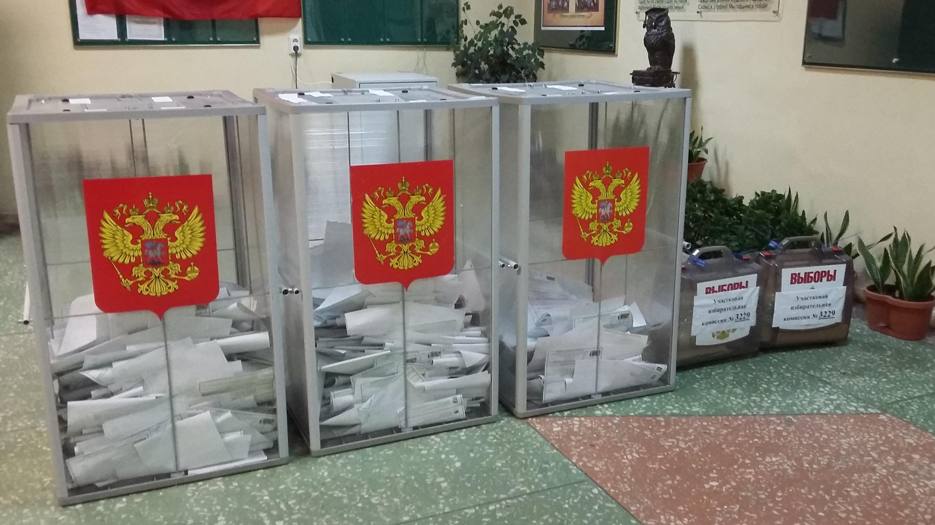Россия предоставит возможность жителям ДНР и ЛНР проголосовать на выборах в Госдуму