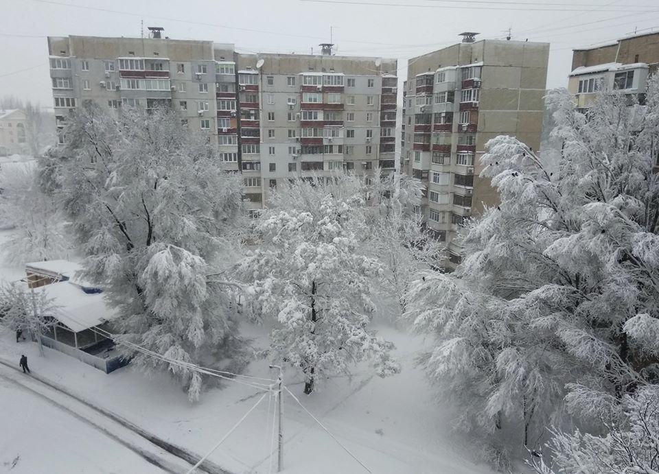 Снегопад в ДНР. Чудесный вид, падающие деревья, первая жертва и режим ЧС. Фото. Видео