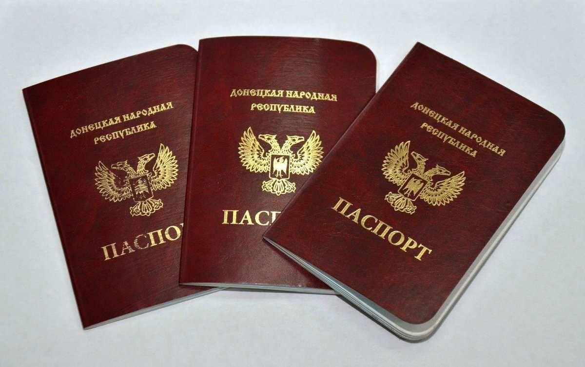 Выдано 700 тысяч паспортов ДНР - Миграционная служба