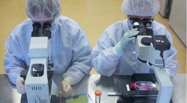 Россия разрабатывает 26 вариантов вакцин от коронавируса