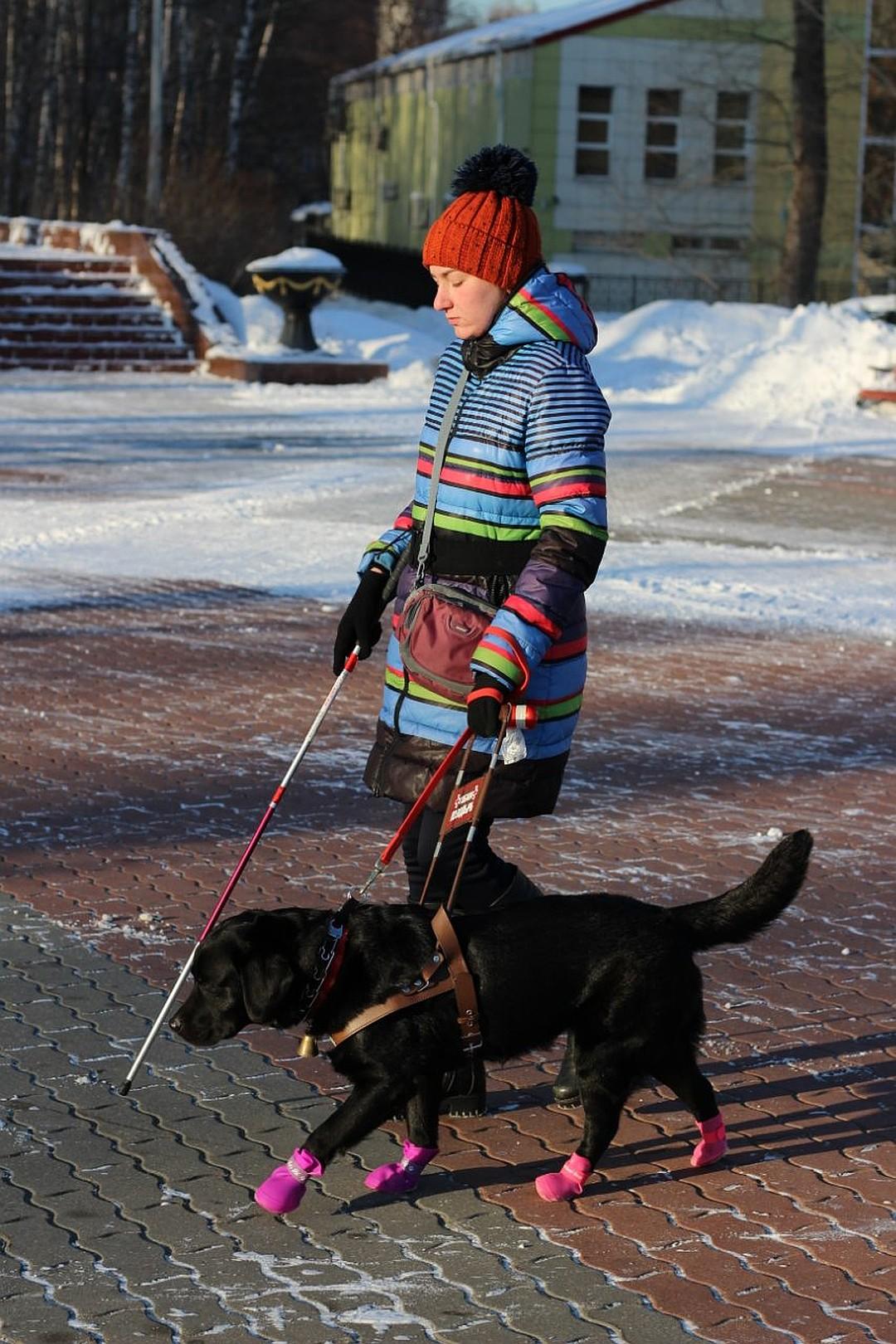 Как сбылась мечта слепой девушки Лили из-под Горловки о собаке-поводыре. Репортаж