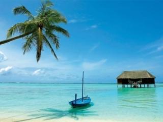 Шри-Ланка и Таиланд: особенности отдыха